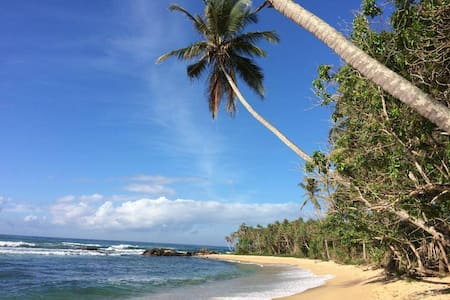Standard room super rate! - Tangalle
