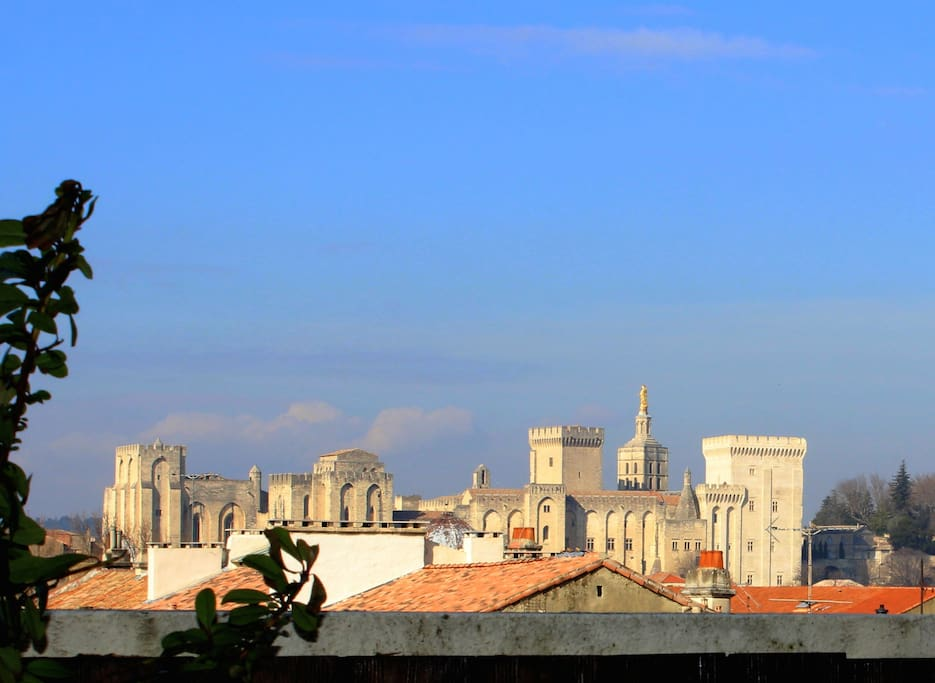 PALAIS DES PAPES DEPUIS LA TERRASSE // PALACE OF THE POPES MONUMENT FROM THE TERRACE.
