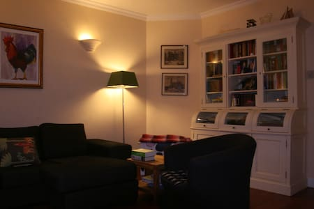 apartment for rent in centre