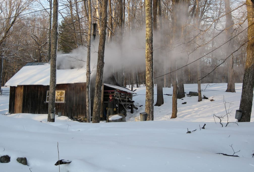 A March/April visit to Breeze Hill may mean you'll get to experience maple sugaring first hand. It's totally weather dependent.
