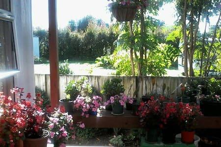 #1large comfortable peaceful home - Waihi - House