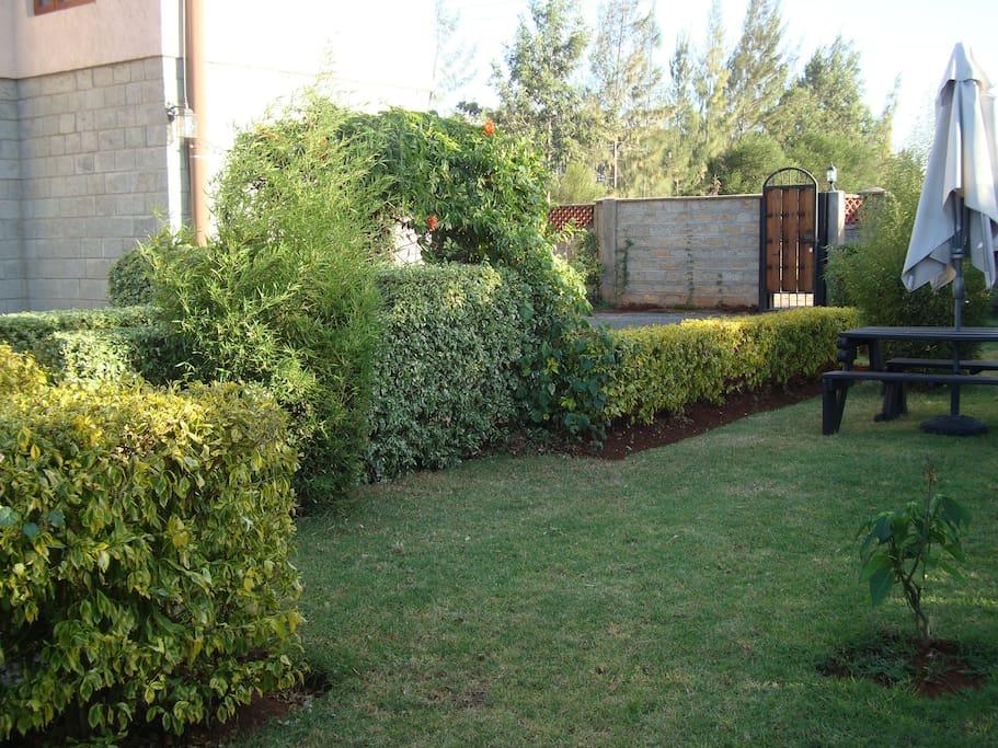 Lovely garden to relax in