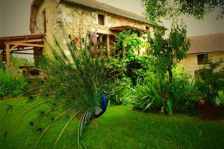 La Ferme du Bost / L'Erable - Castelnaud-la-Chapelle - Bed & Breakfast