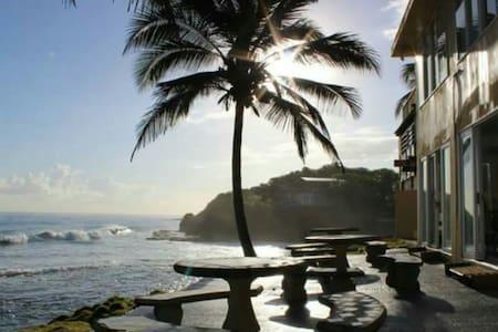 Heaven Awaits - Ocean Front - Dorado