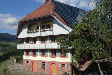 Ferien auf dem Fußbühlhof - Oberharmersbach - Apartamento