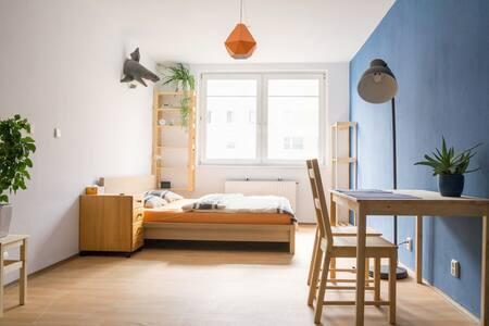 Studio next to the botanical garden - Prague - Apartment