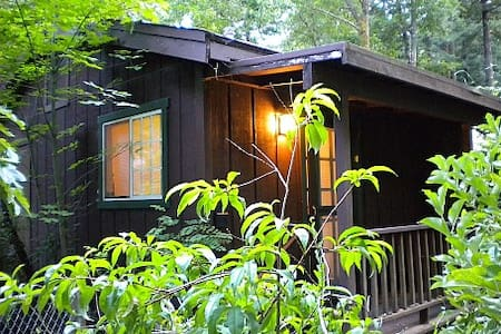 Cottage in the Redwoods at RiverSea - Guerneville - Cabin