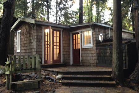 Oceanside Cottage In The Trees - Cabane