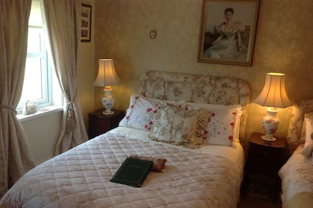 Killyliss House 1 hr North of Dublin in Ballybay - Bed & Breakfast