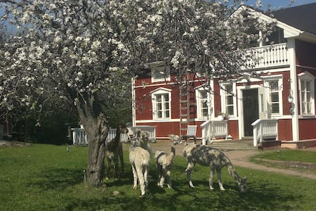 Lovely house in the countryside - Karjaa