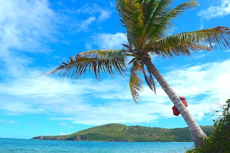 Glamping At Flamenco Beach ;D - Culebra - Tent