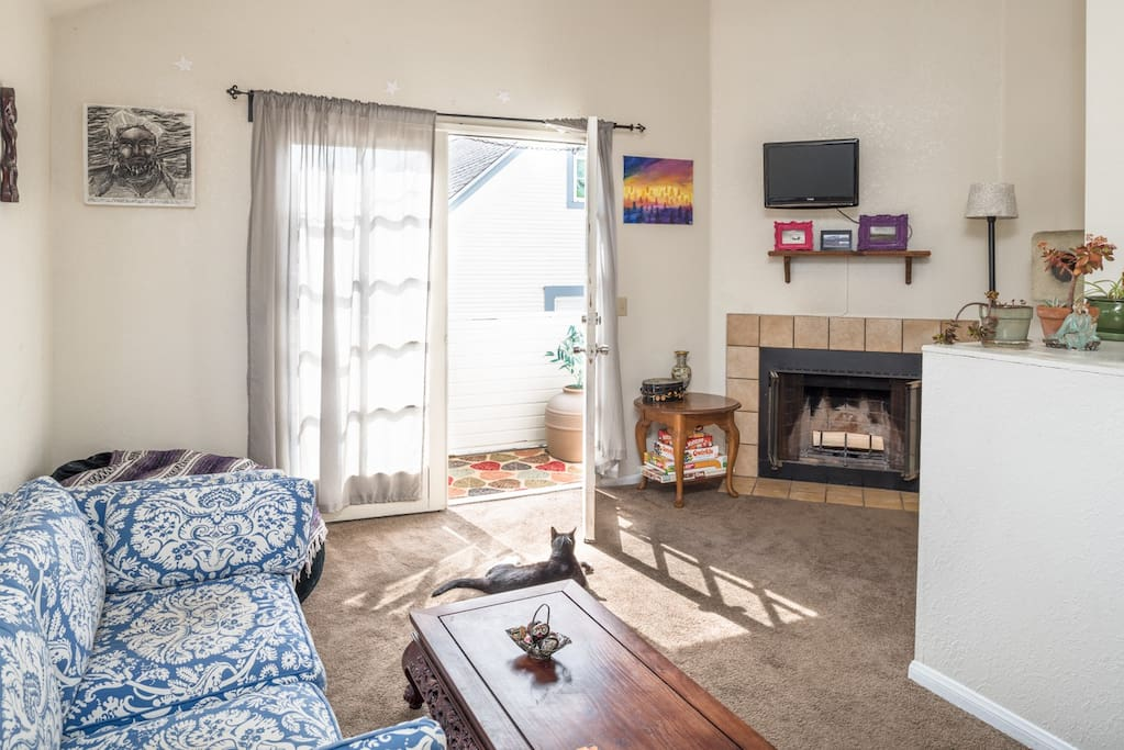 Shared living room with balcony and working fireplace