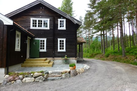 Charming Norwegian log cabin - Casa