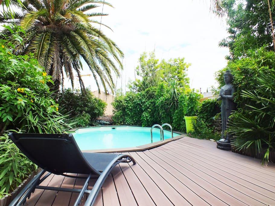 Le jardin avec plante tropical