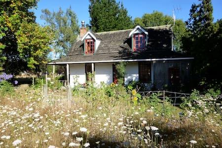 Paradise at Aspbridge Cob Cottage - Nelson - House