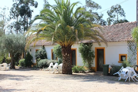 Casa do Guarda sits within QUINTA DO PINHAL, a fully restored rural property perfect for those seeking natural beauty and tranquillity. This farm provides a quiet, welcoming environment ideal for either a family vacation or a romantic getaway.