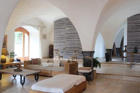 Belle ferme rénovée Alpes Sud (10p) - Valbonnais - House