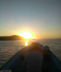 Isla Bejuco, Wild Life Camping - Illa