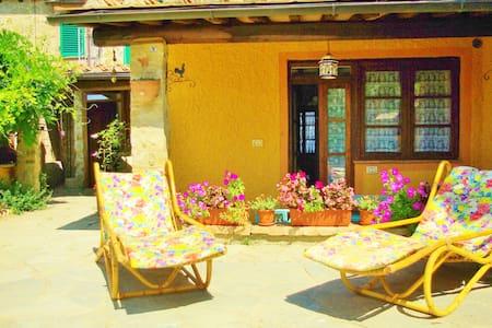 Bright appartment on the hills of Siena - Poggio Lodoli