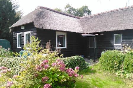 Vrijstaand rietgedekt buitenhuisje in de natuur - Dům