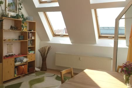 Spacious, cozy rooftop flat with a balcony - Berlin
