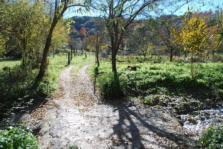 Paraíso natural en Aracena - Casa