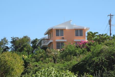 Casa Alejada-Buena Vista Apartment - Lakás