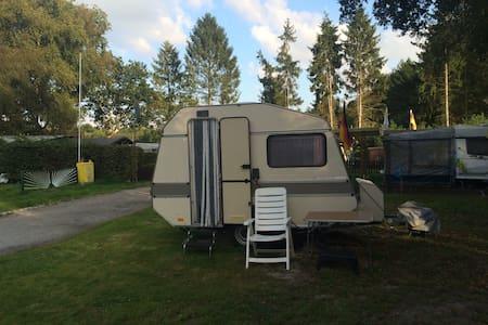 Caravan on campsite at lake. - Camper