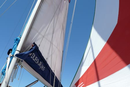 Live an adventure on a sailing boat