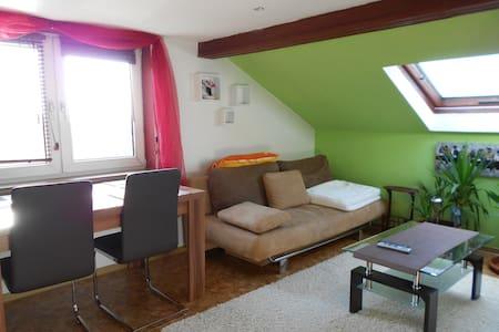 FeWo- Fantasie 74743 Seckach - Apartment