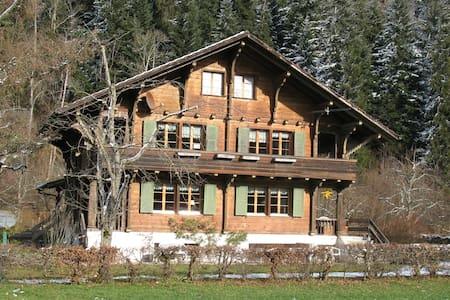Chalet, d.h. ein Holzhaus, sonnig