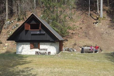 Bled idyllic eco mountain cabin! - Ribno - Haus