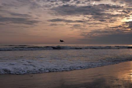 Quiet, Clean, Spacious Close to Manhattan & Beach - Lakás