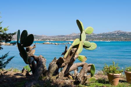 Bilocale sul Mare - La Maddalena - Lejlighed