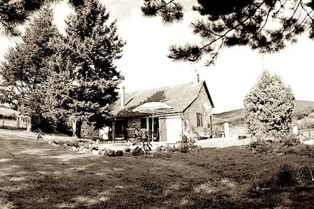 Quiet Artistic Burgundy home - Hus