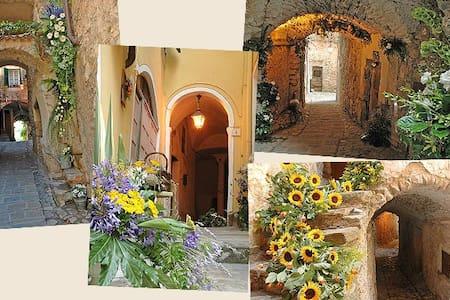 Casa Vacanze Bordighera - Vallebona - Lejlighed