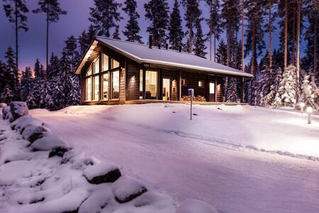 Villa Polaris, Ski Villas Finland - House