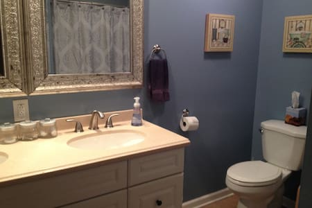 Remodeled Rowhome for Papal Visit  - Phoenixville - House