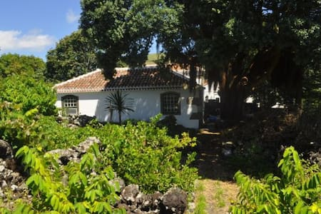 Beautiful cottage - AZORES Terceira