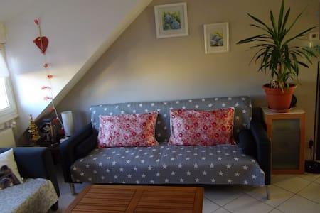 Gîte sympa à Colmar - Appartamento