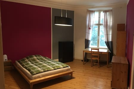 Lovely, spacious, quiet room in Köpenick centre - Apartamento