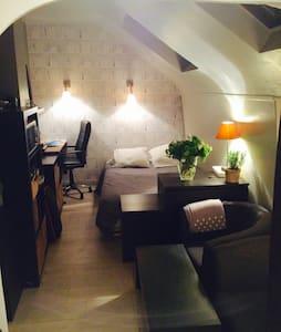 STUDIO MODERNE RUE ROYALE 20m2 - Paris - Wohnung