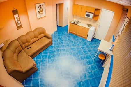 2-х комнатная квартира-студия в центре города. - Apartamento