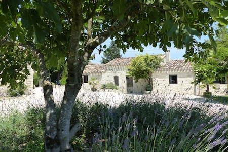 Un Mas du Quercy rénové avec goût. Porcherie - Rumah Tamu