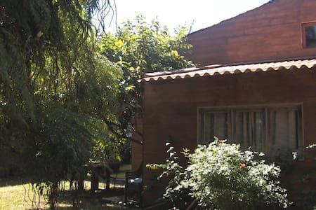 Banana's Cottage - Ponta Delgada - House
