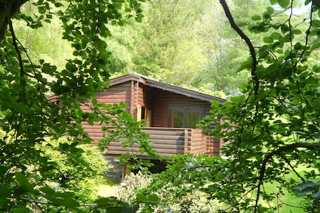 Cosy log cabin in great woodland setting - Cabin