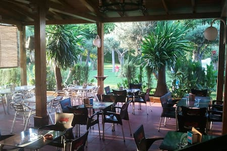 Hostal Restaurante Al-Andalus S.3 - La Carlota - Overig
