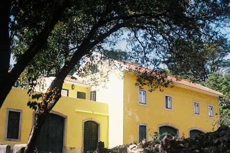 The Five House - Cynthia charming room - Sintra - Bed & Breakfast