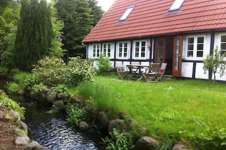 roligt landhus ved naturperle - Davinde - Casa