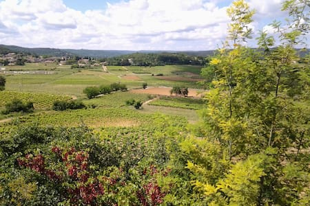 2 pièces,dans villa au calme, vue sur les vignes - Cornillon - Huoneisto
